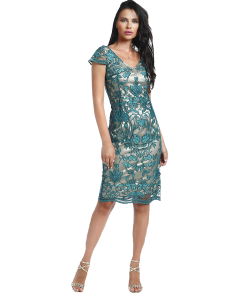 Pencil lace dress with short sleeves